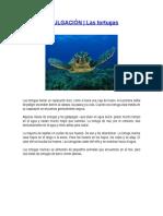 ARTICULOS DE DIVULGACION CIENTIFICA.docx