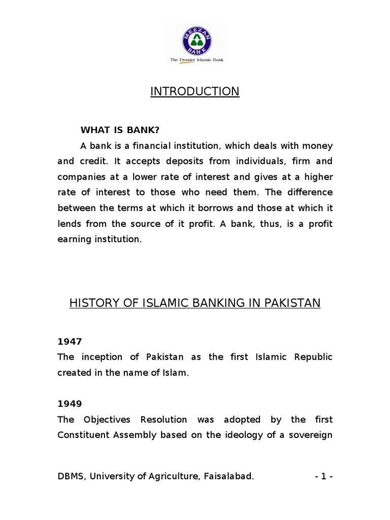 internship report on meezan bank
