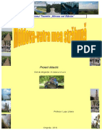 proiect didactic primara ora 2016.doc