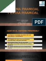 Sistema Piramidal y Extra Piramidal
