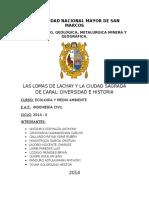 Ecologia N-007 (Lachay y Caral) Adrian Salazar Padilla