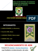 Secuenciamiento Del Genoma de La Papa.UNSCH