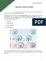 3. Lesion, Adaptacion y Muerte Celulares