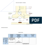 Adrenergico.pdf
