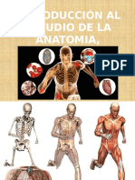 Anatomía , Fisiología y Educación Para La Salud
