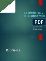 Biofisica BIODINAMICA Masa Masa Gravitatoria e Inercial Fuerza Aceleracion 4.0
