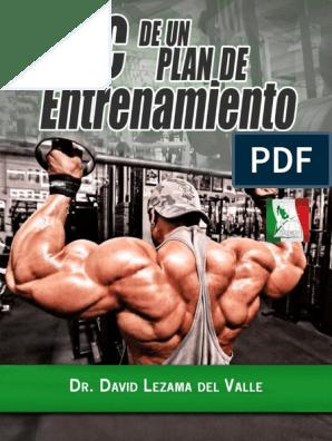 De entrenamiento fitness pdf plan