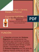 Sistema Digestivo Exposicion Masaje Sabado