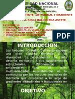 DIAPOSITIVA-DE-ECOLOGIA-1.pptx