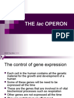 lac_OPERON.ppt