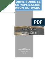 Prosesos y aplicacion del carbon (1)-HewlettPackard.docx