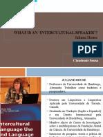 Falante Intercultural