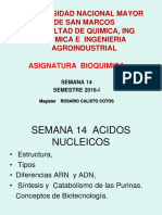 Purinas - bioquimica