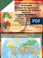 Expo Naranja Ecologia