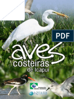 Aves Costeiras de Icapui