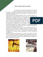 TECNICAS DE INSPECION DEL HUEVO.docx