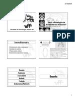 Fases Laboratoriais Delineamento Pprs e Falhas [Modo de Compatibilidade]