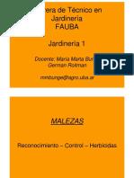 MalezasOIP 2013 PDF