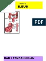 Bedah Digestif - SKD 2 - Ileus