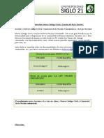 Implementación Nuevo Código Civil y Comercial de La Nación.docx