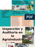 Audiitoria e Inspeccion