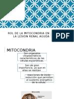Rol de La Mitocondria en La Insuficiencia Renal