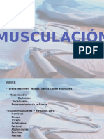 musculacion-120223044702-phpapp01