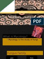 Lec 15mycology Spp