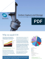 CCSA Briefing Leaflet