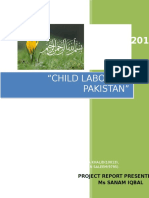 Report on Child Labour in Pakistan by Hamza Khalid
