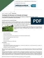 Ambiente Brasil » Conteúdo » Energia » Biomassa » Vantagens Da Biomassa Na Produção de Energia