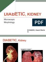 Diabetic, Kidney