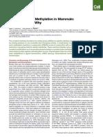 Protein Arginine Methylation in Mammals