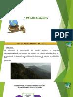 REGLAMENTACION AMBIENTAL.pptx