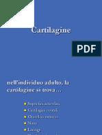 cartilagine.pdf