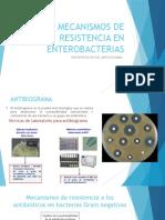 Mecanismos de Resistencia en Enterobacterias