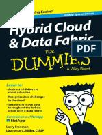 Wp Hybrid Cloud Data Fabric for Dummies