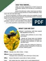 Bee Workshop (1)