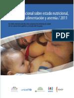 Encuesta Lactancia Uruguay2011 Web