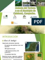 Presentación UT Calakmul