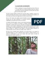 La Salud de Los Bosques