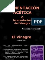 mFERMENTACIÒN-ACÈTICA