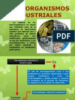 Microbiologia Industrial Editado