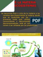 Ciclo de Materia en Los Ecosistemas