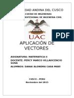 APLICACION DE VECTORES.docx