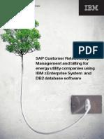 SAP Utilities From IBM