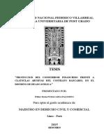 Tesis Para Sustentar Wilber (Derecho y Ciencias Politicas Decimo Ciclo)