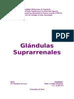 Suprarrenales.doc