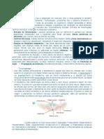 Resumo Sistema Nervoso PDF