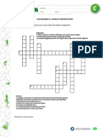 crucigrama sist. respiratorio.pdf